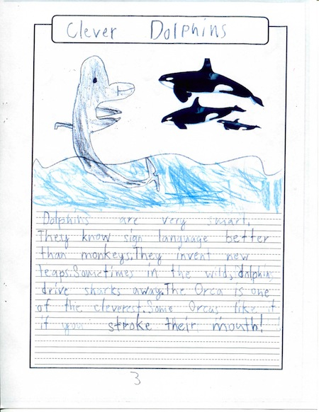 Adorable Dolphins Page 5